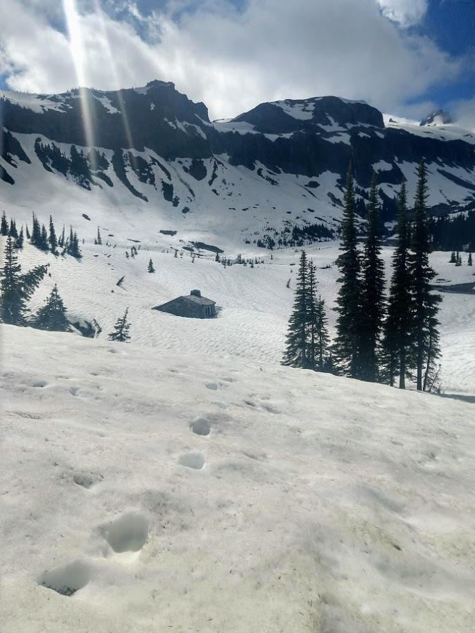 snow ohanapecosh